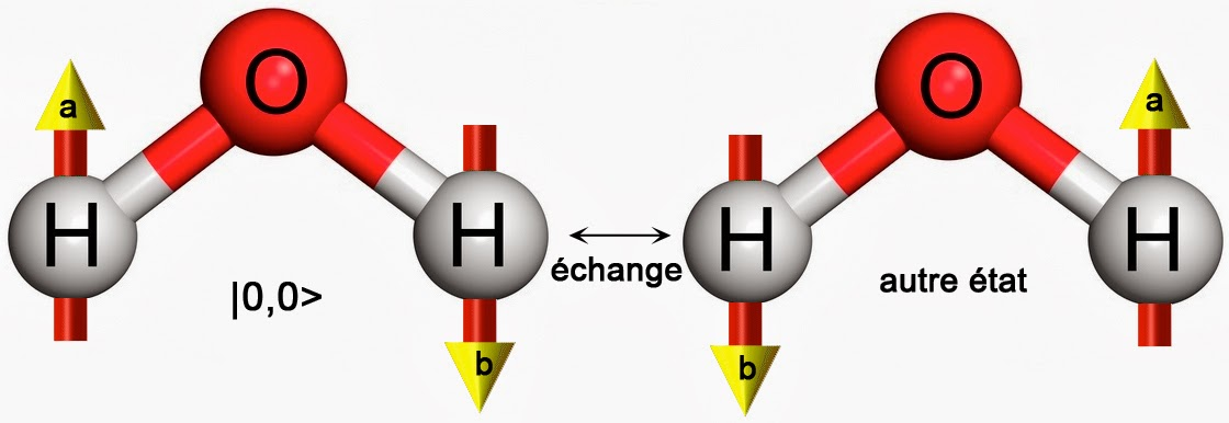 """Image représentant l'échange de position des deux atomes d'hydrogène dans l'isomère de spin """"para"""""""