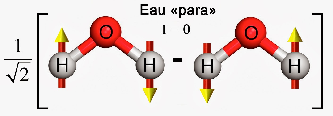 """Image illustrant la combinaison antisymétrique des spins de l'eau """"para"""""""