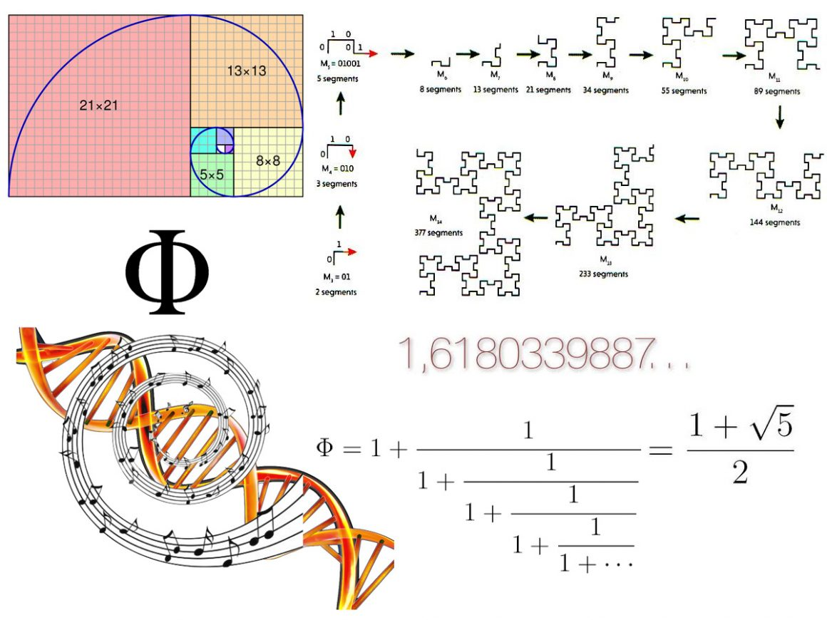 19•Nombre d'Or, ADN et COVID-19