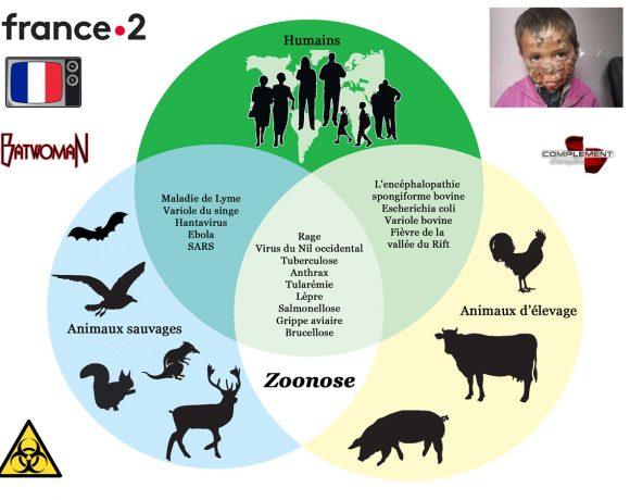 21•La zoonose