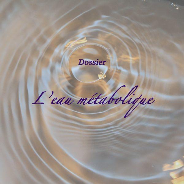 Dossier : l'eau métabolique