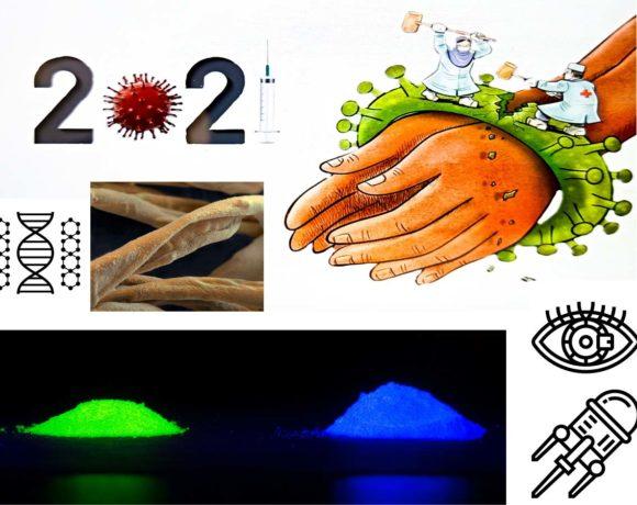 46•Nanotechnologies et vaccins